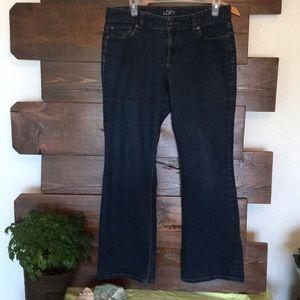 Ann Taylor curvy flare jeans